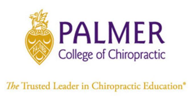 Palmer College Gallup Report image